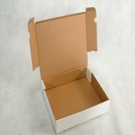 CAIXA PARA SALGADOS 30x25x7cm - Polibox Embalagens